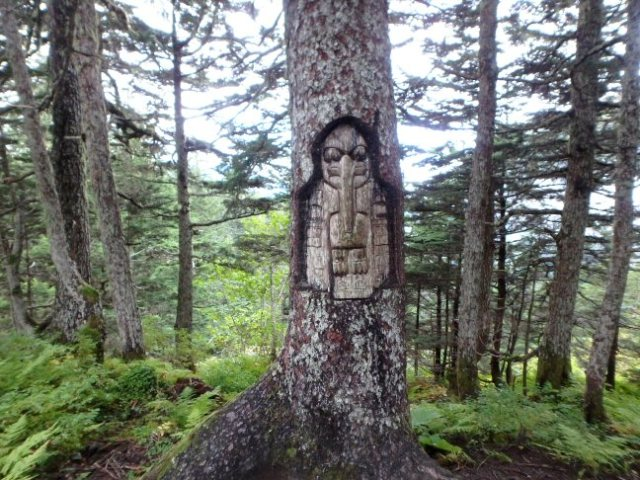 carved tree on the tram trail