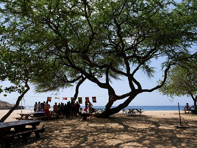 beach at Lanai