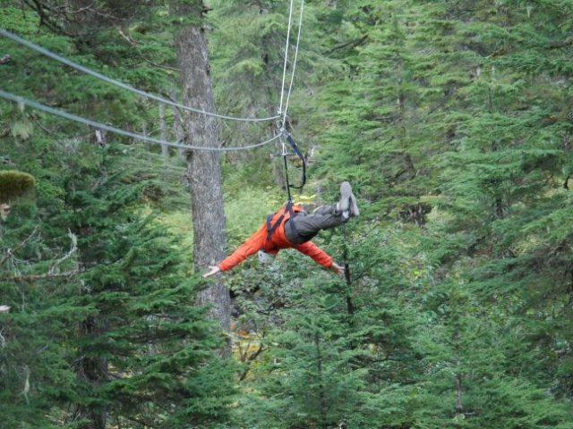hands free ziplining