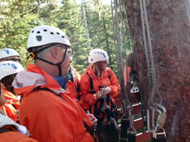 ziplining in Juneau