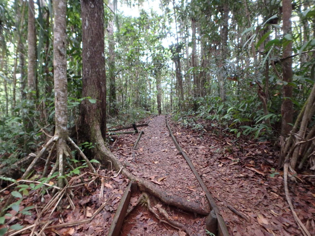 nature park in Fiji