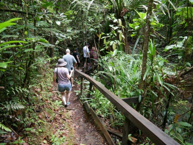 trail in Fiji