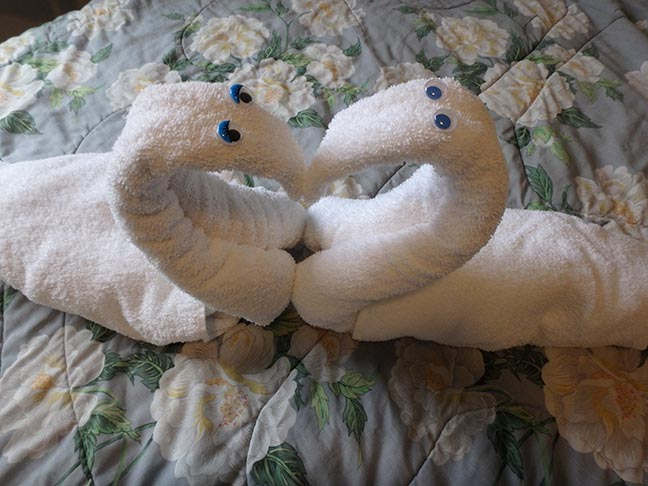 towel swan heart