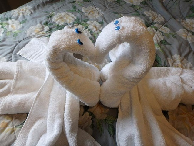 towel swan heart with wings spread