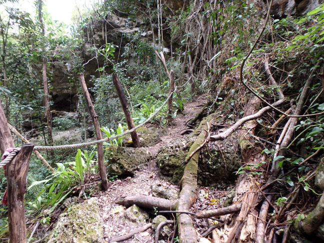 trail to cave on Lifou