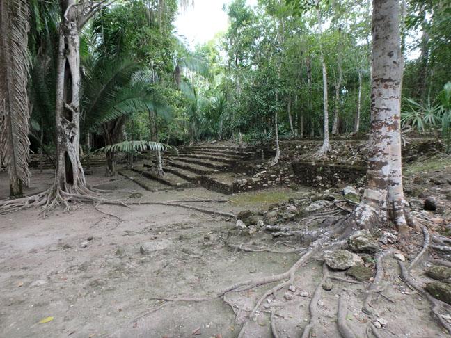 ruins in the jungle