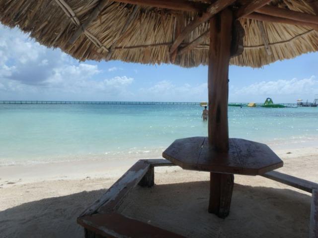 palapa on the beach