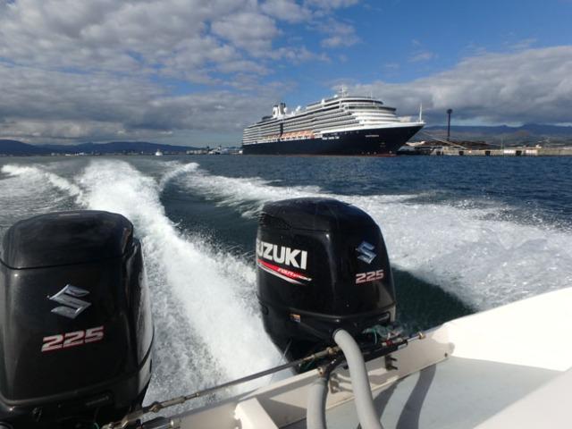 harbor tour past the cruise ship