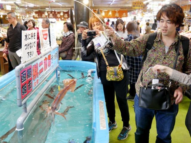 squid tank at Hakodate morning market