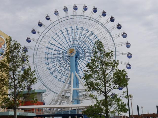 Shimizu wheel