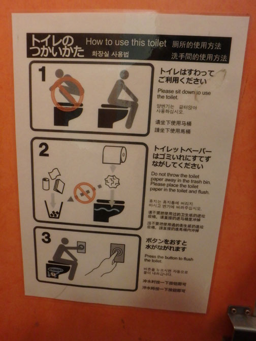 how to use a sit toilet