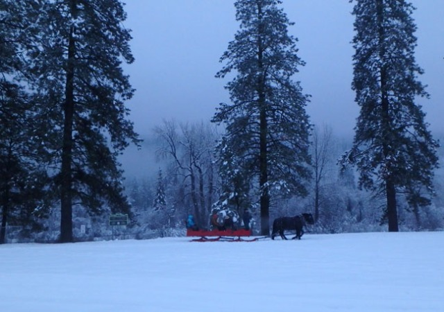 Leavenworth sleigh ride