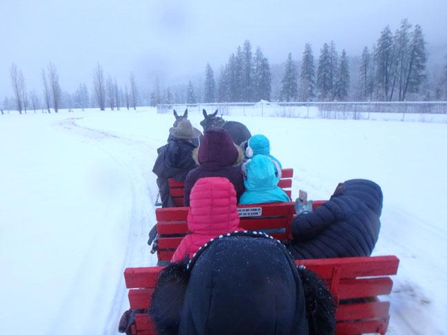 sleigh ride in Leavenworth