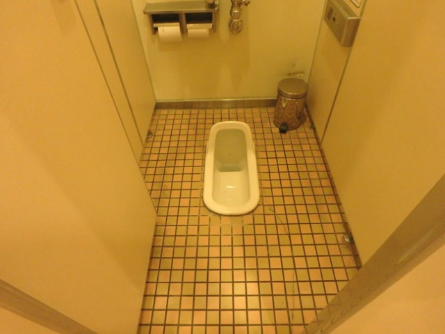 squat toilet in Japan