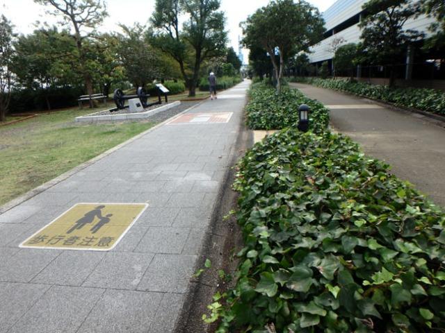 trail in Shimizu