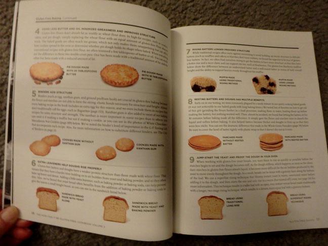 flour comparison by America's Test Kitchen