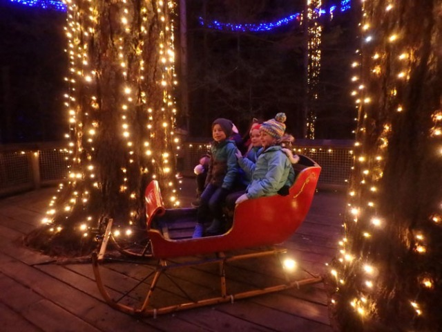 sleigh at Capilano Bridge Park