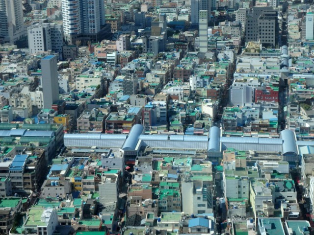 Busan tower view