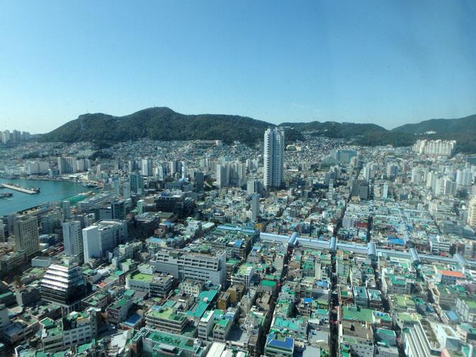Busan tower view